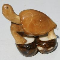 Tagua nut carved turtle