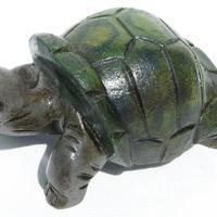 Trä-sköldpadda