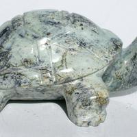 tortue de pierre