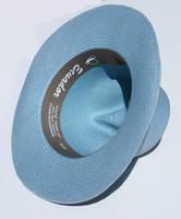 Sombrero de paja del cielo azul