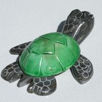 Tortuga marmol verde