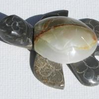 Marmol tortuga