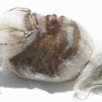 Reproducción de cabeza reducida
